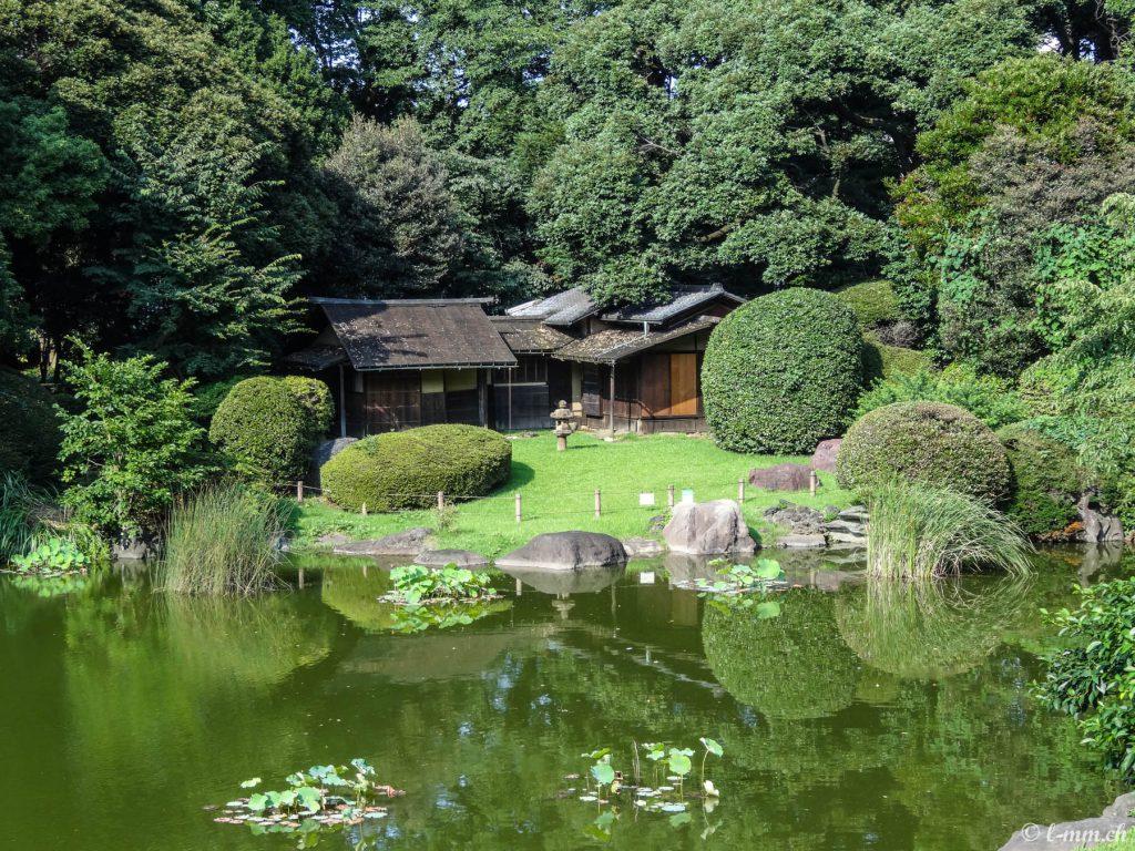 Tokyo national museum garden - Tokyo