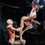 Body World Amsterdam - Pays-Bas